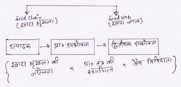 http://www.iasplanner.com/civilservices/images/food-chain.jpg